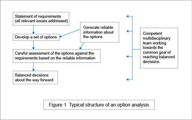 Typical structure of an option analysis